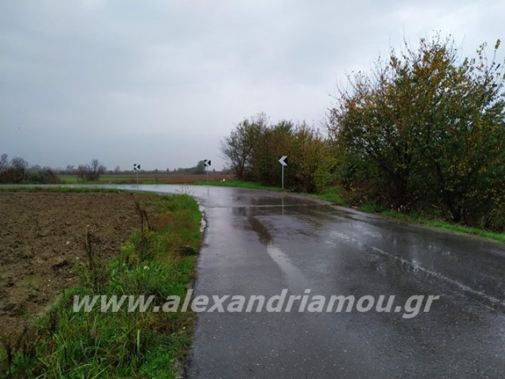 alexandriamou.gr_simanseis2019001