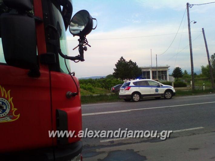 alexandriamou.gr_siria003