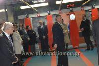 alexandriamou_skopeythrio_beroia_0092001103