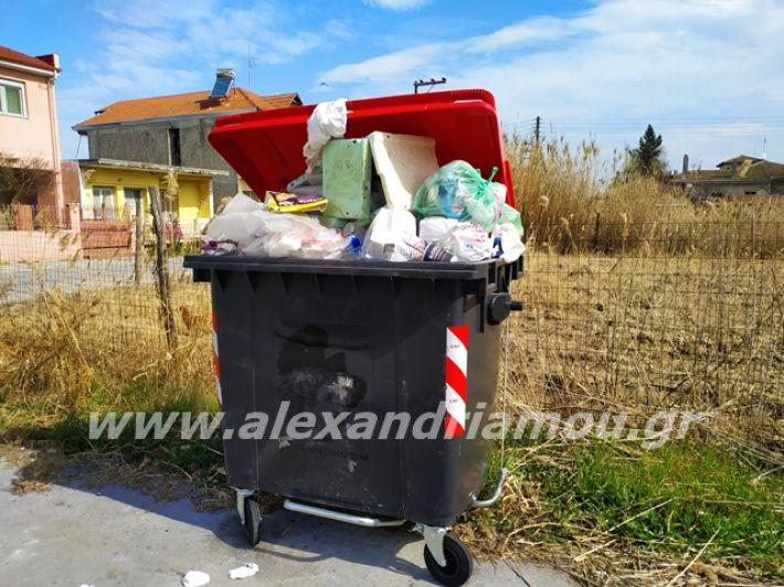 alexandriamou.gr_skoupidia3.3.20007