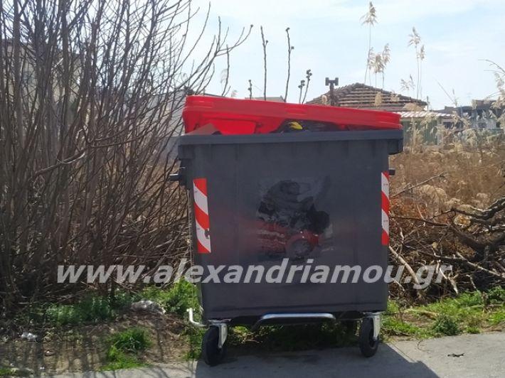 alexandriamou.gr_skoupidia3.3.20022