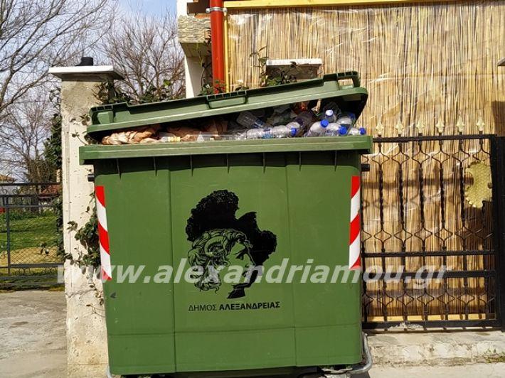 alexandriamou.gr_skoupidia3.3.20045