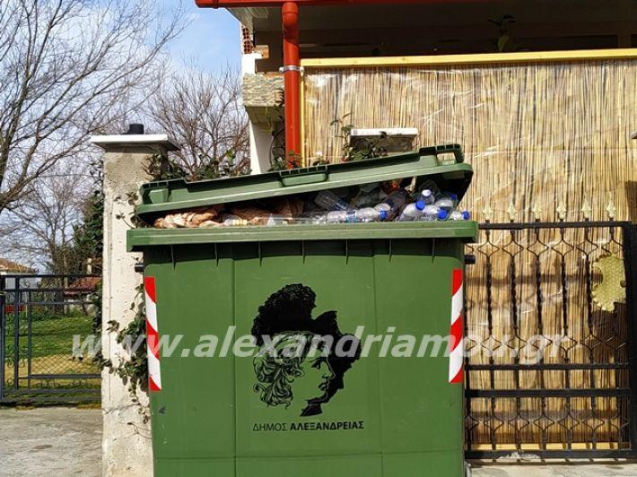 alexandriamou.gr_skoupidia3.3.20047