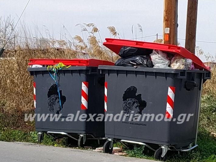 alexandriamou.gr_skoupidia3.3.20050