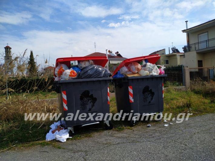 alexandriamou.gr_skoupidia3.3.20052