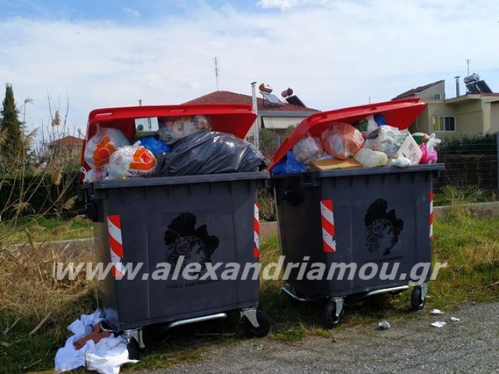 alexandriamou.gr_skoupidia3.3.20053