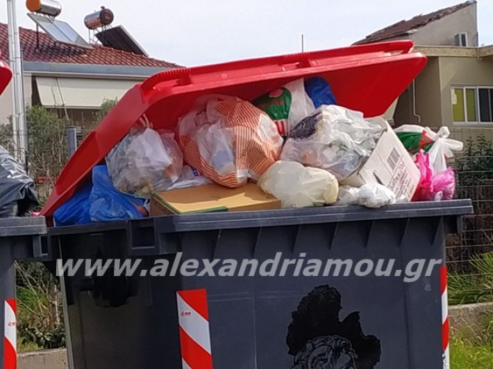 alexandriamou.gr_skoupidia3.3.20054