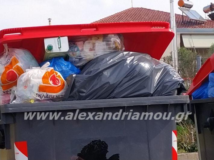 alexandriamou.gr_skoupidia3.3.20055