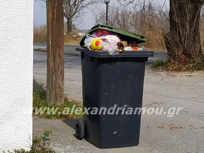alexandriamou.gr_skoupidia3.3.20074