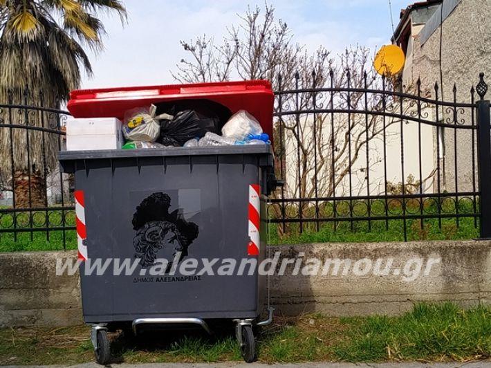 alexandriamou.gr_skoupidia3.3.20084