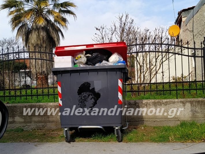 alexandriamou.gr_skoupidia3.3.20087