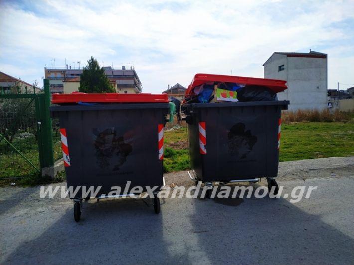 alexandriamou.gr_skoupidia3.3.20089