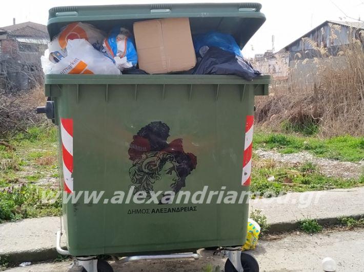 alexandriamou.gr_skoupidia3.3.20091