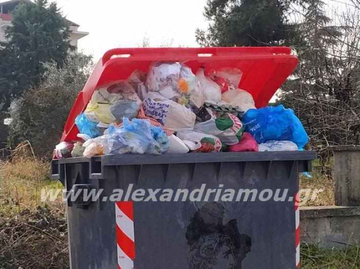 alexandriamou.gr_skoupidia3.3.20096
