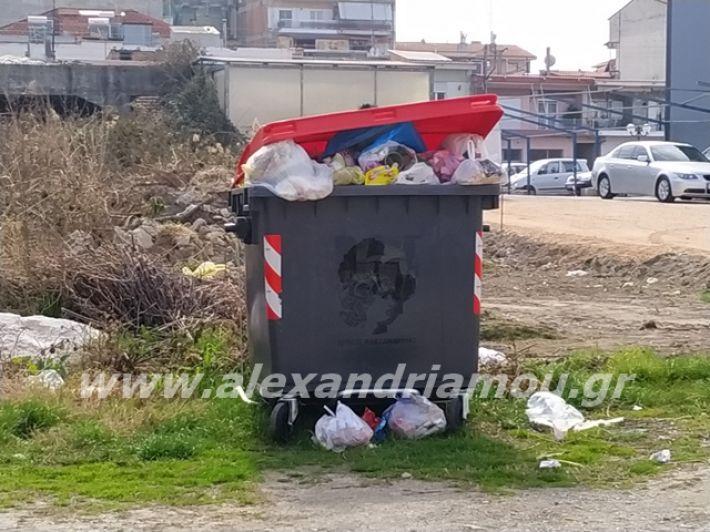 alexandriamou.gr_skoupidia3.3.20103