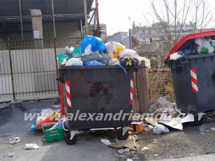 alexandriamou.gr_skoupidia3.3.20105
