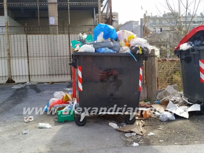 alexandriamou.gr_skoupidia3.3.20107