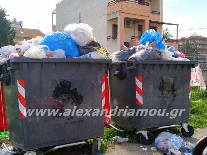 alexandriamou.gr_skoupidia3.3.20109