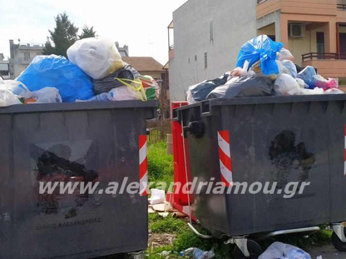 alexandriamou.gr_skoupidia3.3.20110