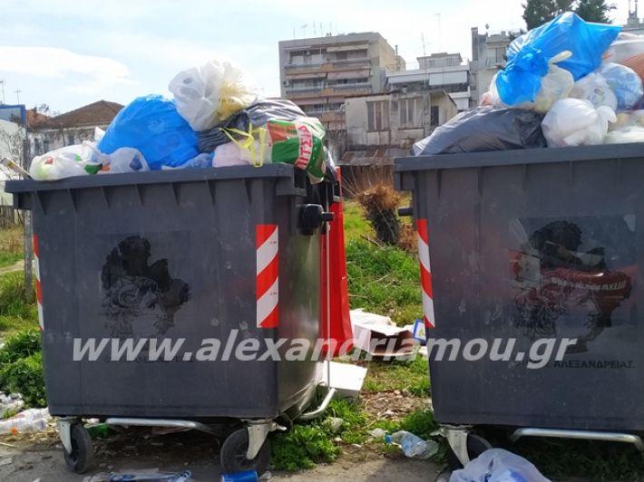 alexandriamou.gr_skoupidia3.3.20112