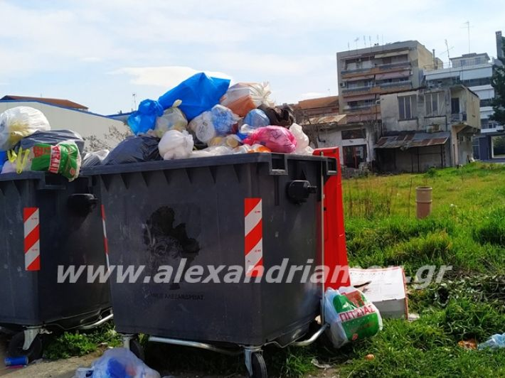 alexandriamou.gr_skoupidia3.3.20114