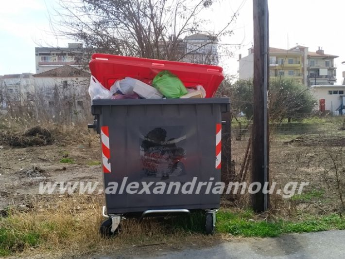 alexandriamou.gr_skoupidia3.3.20118