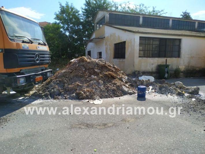 alexandriamou.gr_skoupidiaamfitheatro2019011