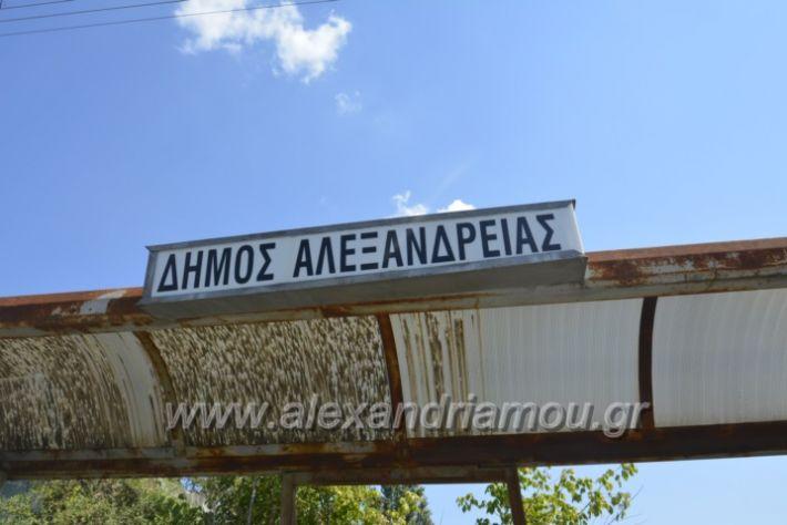 alexandriamou.gr_staseisalex007