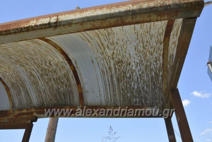 alexandriamou.gr_staseisalex027