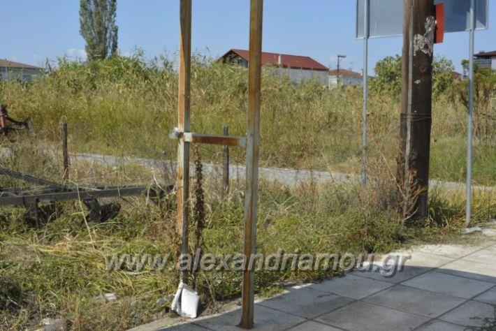 alexandriamou.gr_staseisalex049