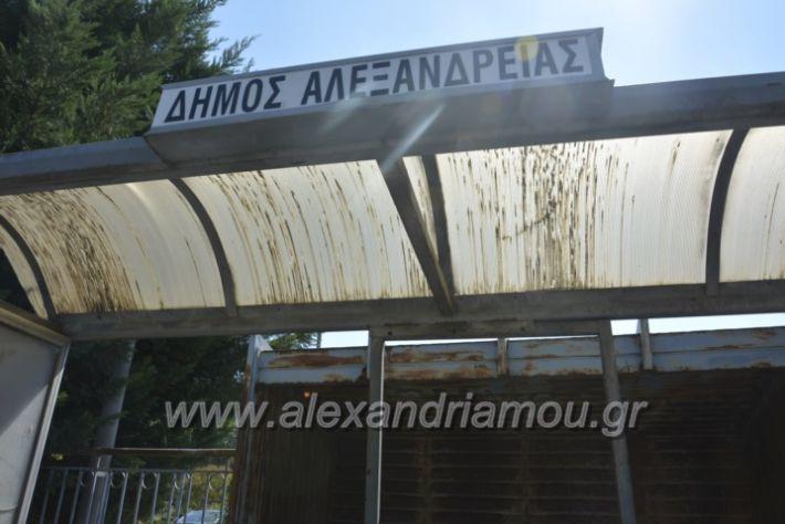 alexandriamou.gr_staseisalex059