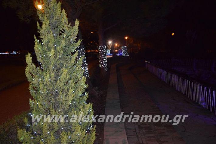 alexandriamou.gr_anousa2019037