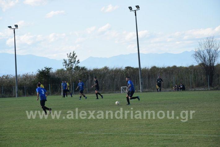 www.alexandriamou.gr_lsxoinasDSC_0088