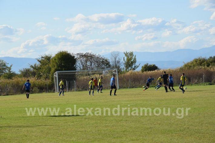 www.alexandriamou.gr_lsxoinasDSC_0092