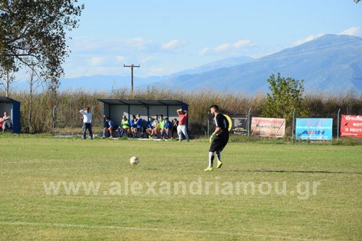 www.alexandriamou.gr_lsxoinasDSC_0094