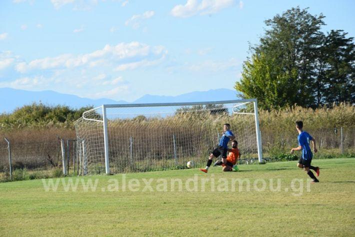www.alexandriamou.gr_lsxoinasDSC_0103