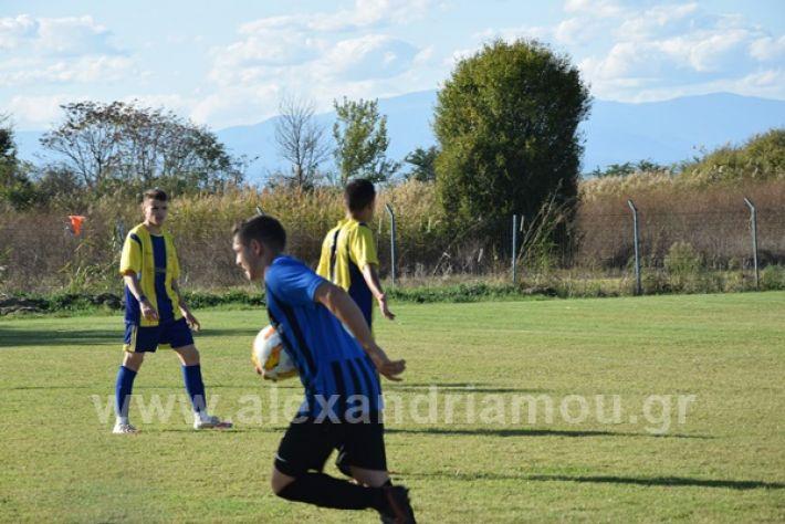 www.alexandriamou.gr_lsxoinasDSC_0104