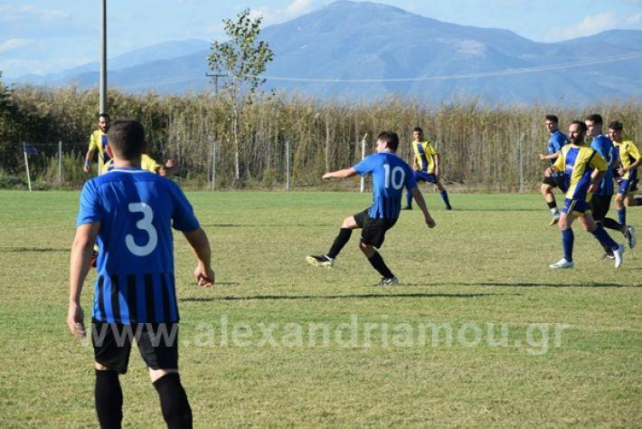 www.alexandriamou.gr_lsxoinasDSC_0112