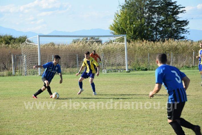 www.alexandriamou.gr_lsxoinasDSC_0113
