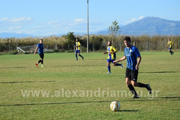 www.alexandriamou.gr_lsxoinasDSC_0117