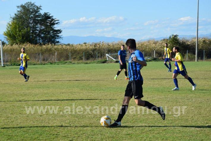 www.alexandriamou.gr_lsxoinasDSC_0118