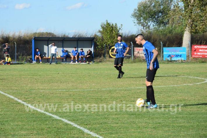 www.alexandriamou.gr_lsxoinasDSC_0120