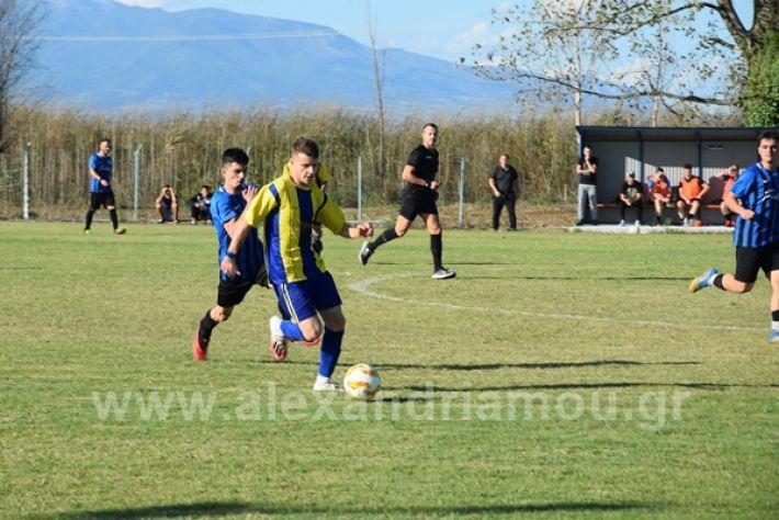 www.alexandriamou.gr_lsxoinasDSC_0122