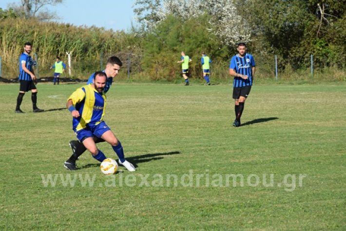 www.alexandriamou.gr_lsxoinasDSC_0131
