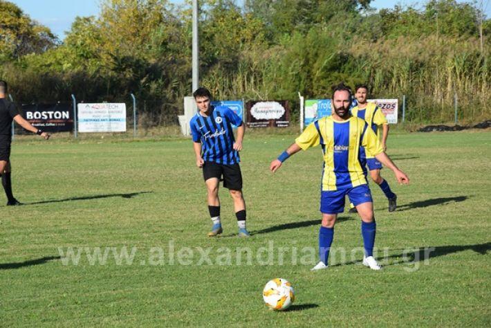 www.alexandriamou.gr_lsxoinasDSC_0133