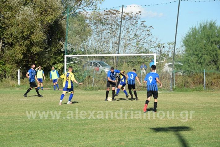 www.alexandriamou.gr_lsxoinasDSC_0136