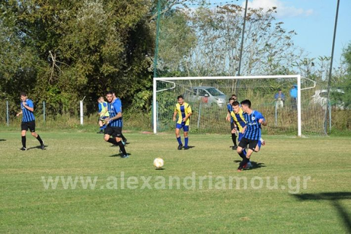 www.alexandriamou.gr_lsxoinasDSC_0137