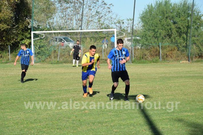 www.alexandriamou.gr_lsxoinasDSC_0138