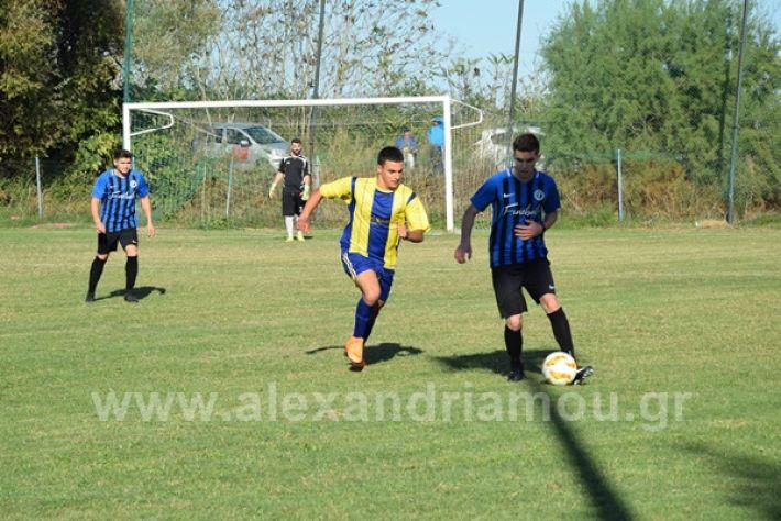 www.alexandriamou.gr_lsxoinasDSC_0139
