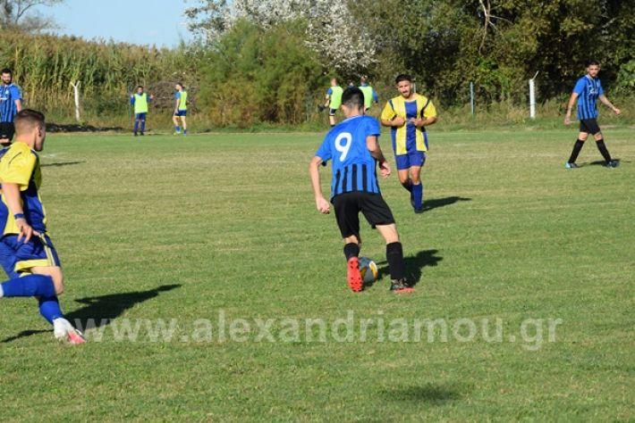 www.alexandriamou.gr_lsxoinasDSC_0141